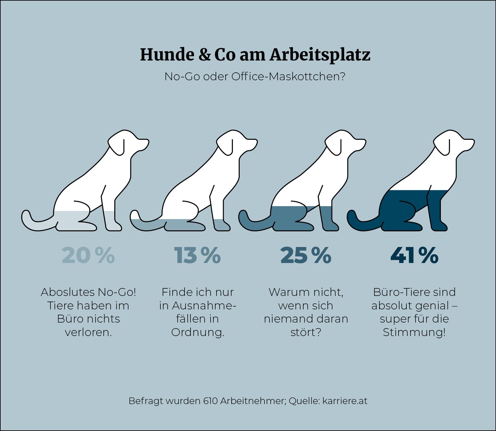 Hund_am_Arbeitsplatz_Infografik